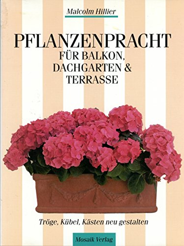 9783576100008: Pflanzenpracht f�r Balkon, Dachgarten & Terrasse. K�bel, Tr�ge, K�sten neu gestalten