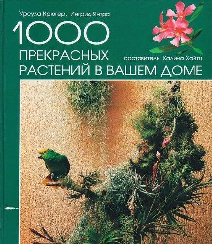 9783576103986: Die schönsten Zimmerpflanzen für ein grünes Zuhause