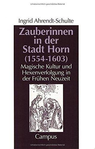 9783593358871: Zauberinnen in der Stadt Horn (1554-1603). Magische Kultur und Hexenverfolgung in der Frühen Neuzeit.