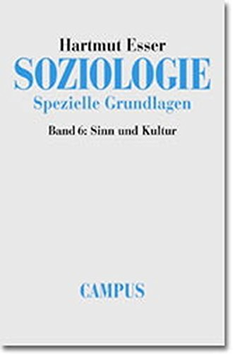 9783593364230: Sinn und Kultur