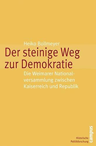 9783593384450: Der steinige Weg zur Demokratie: Die Weimarer Nationalversammlung zwischen Kaiserreich und Republik