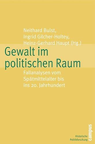 9783593387307: Gewalt im politischen Raum: Fallanalysen vom Sp�tmittelalter bis ins 20. Jahrhundert