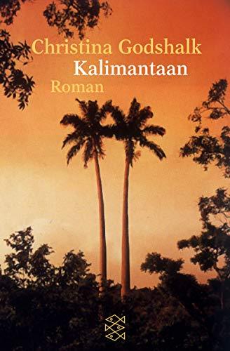9783596148875: Kalimantaan.