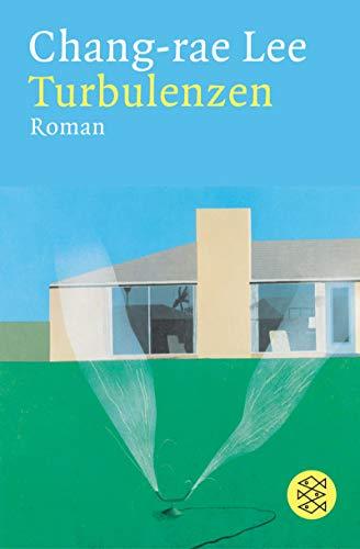 9783596164714: Turbulenzen: Roman