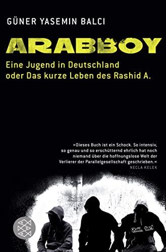 9783596182428: Arabboy: Eine Jugend in Deutschland oder Das kurze Leben des Rashid A