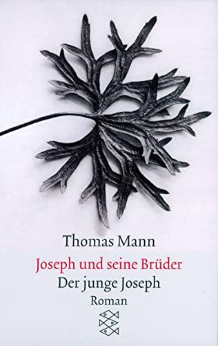 Joseph Und Seine Bruder (German Edition): Thomas Mann