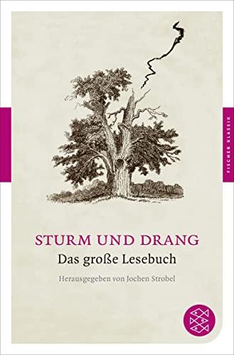 Sturm und Drang: Das große Lesebuch (Fischer