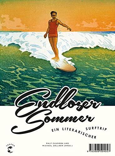 9783608504057: Endloser Sommer: Ein literarischer Surftrip