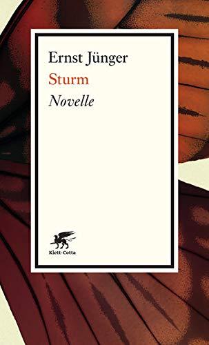9783608960778: Sturm