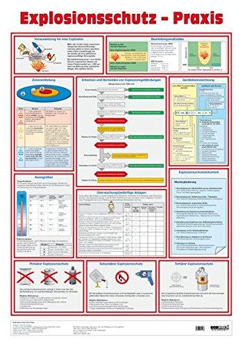 9783609611488: Wandtafel Explosionsschutz-Praxis