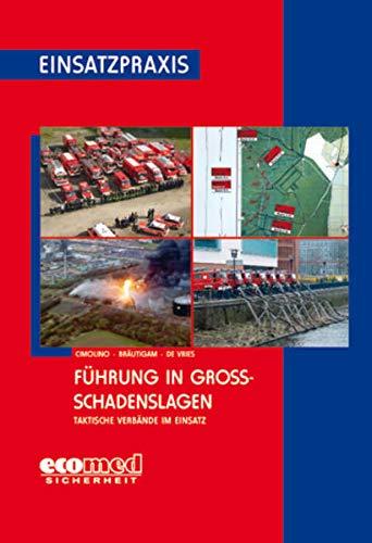 Führung in Großschadenslagen: Taktische Verbände im Einsatz - Cimolino, Ulrich; Bräutigam, Andreas; Vries, Holger De