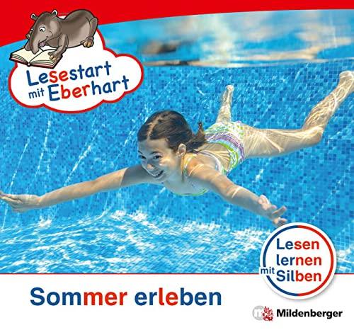 9783619044412: Lesestart mit Eberhart - Lesestufe 3 Sommer erleben