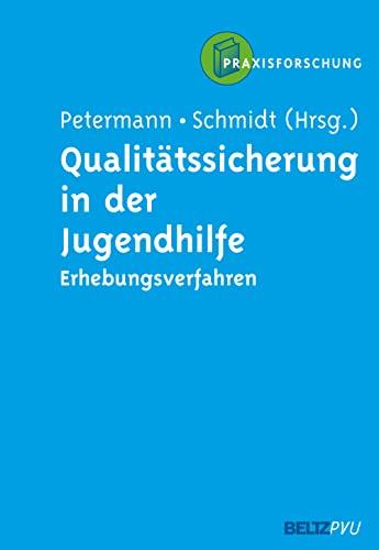 9783621275576: Qualit�tssicherung in der Jugendhilfe: Neue Erhebungsverfahren und Ans�tze der Praxisforschung