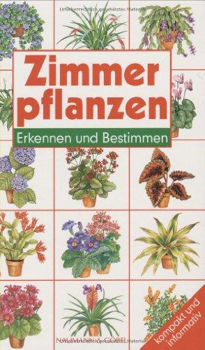 Zimmerpflanzen erkennen und bestimmen zvab - Zimmerpflanzen bestimmen ...