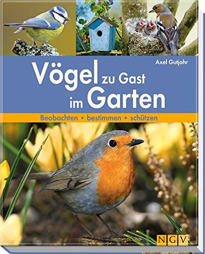 9783625128748: V�gel zu Gast im Garten: Beobachten - bestimmen - sch�tzen