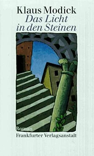9783627101220: Das Licht in den Steinen: Roman (German Edition)