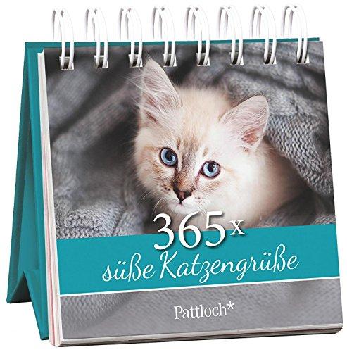 365x süße Katzengrüße
