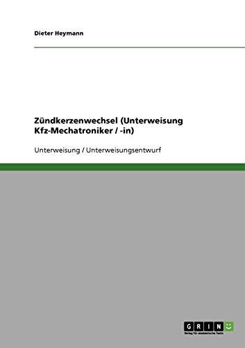 Zündkerzenwechsel (Unterweisung Kfz-Mechatroniker / -in): Dieter Heymann
