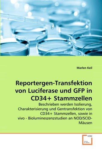 9783639058710: Reportergen-Transfektion von Luciferase und GFP in CD34+ Stammzellen: Beschrieben werden Isolierung, Charakterisierung und Gentransfektion von CD34+ ... - Biolumineszenzstudien an NOD/SCID-M�usen