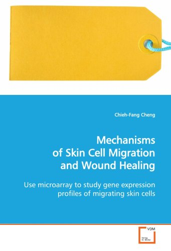 9783639124941: Mechanisms of Skin Cell Migration and Wound Healing: Use microarray to study gene expression profiles of migrating skin cells.