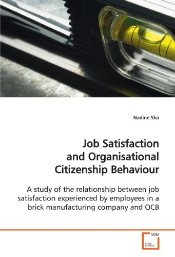 9783639146141: Job Satisfaction and Organisational Citizenship Behaviour: A study of the relationship between job satisfaction experienced by employees in a brick manufacturing company and OCB