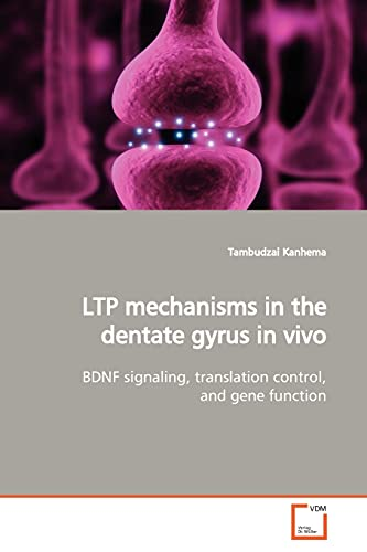 9783639150483: LTP mechanisms in the dentate gyrus in vivo: BDNF signaling, translation control, and gene function