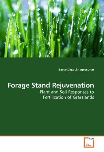 9783639160345: Forage Stand Rejuvenation: Plant and Soil Responses to Fertilization of Grasslands