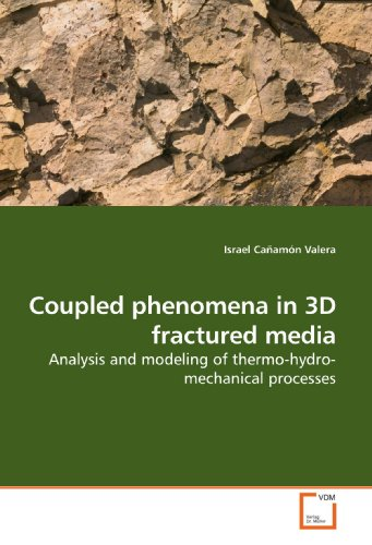 9783639189971: Coupled phenomena in 3D fractured media: Analysis and modeling of thermo-hydro-mechanical processes