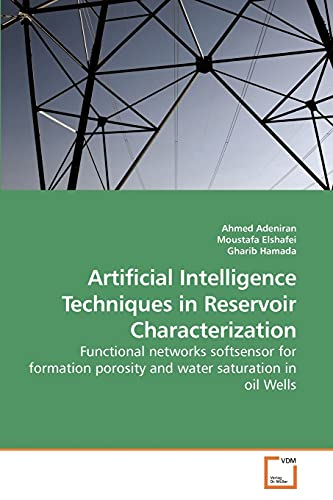 9783639244267: Artificial Intelligence Techniques in Reservoir Characterization: Functional networks softsensor for formation porosity and water saturation in oil Wells