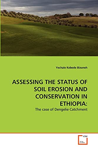 9783639343274: ASSESSING THE STATUS OF SOIL EROSION AND CONSERVATION IN ETHIOPIA:: The case of Dengelie Catchment