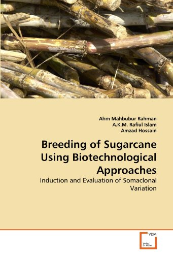 9783639371970: Breeding of Sugarcane Using Biotechnological Approaches: Induction and Evaluation of Somaclonal Variation