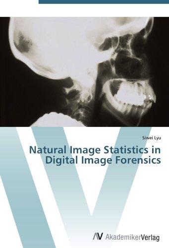 9783639432138: Natural Image Statistics in Digital Image Forensics