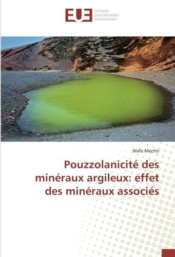 Pouzzolanicité des minéraux argileux: effet des minéraux associés (Paperback): Wafa Mechti