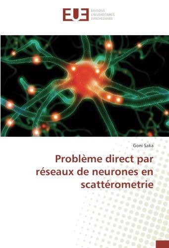 Problème direct par réseaux de neurones en scattérometrie - Goni Saka