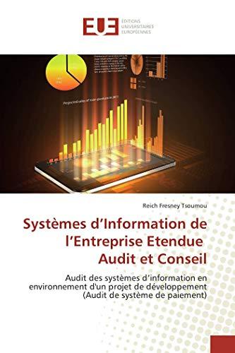 Systèmes d'Information de l'Entreprise Etendue Audit et Conseil: Audit des systèmes d'...