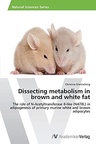 9783639640953: Dissecting metabolism in brown and white fat: The role of N-Acetyltransferase 8-like (NAT8L) in adipogenesis of primary murine white and brown adipocytes