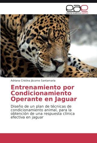 Entrenamiento por Condicionamiento Operante en Jaguar: Jácome Santamaria, Adriana
