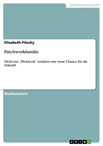 9783640142033: Patchworkfamilie