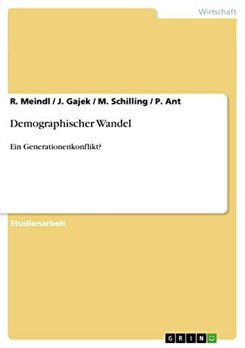 9783640304035: Demographischer Wandel (German Edition)