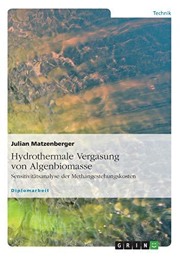 9783640477821: Hydrothermale Vergasung von Algenbiomasse