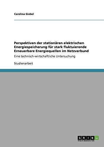 9783640814640: Perspektiven der stationären elektrischen Energiespeicherung f�1/4r stark fluktuierende Erneuerbare Energiequellen im Netzverbund