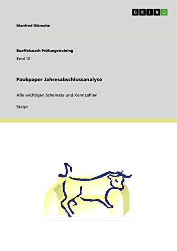 Paukpaper Jahresabschlussanalyse: Manfred W. Nsche