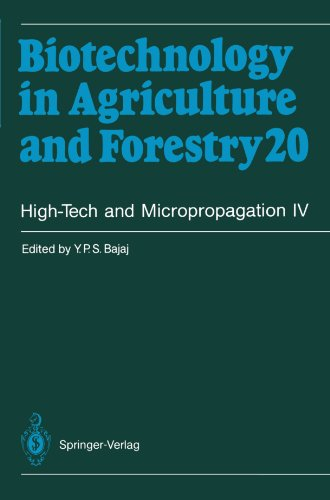 9783642081057: High-Tech and Micropropagation IV (Biotechnology in Agriculture and Forestry)