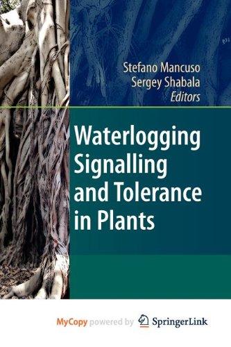 9783642103445: Waterlogging Signalling and Tolerance in Plants