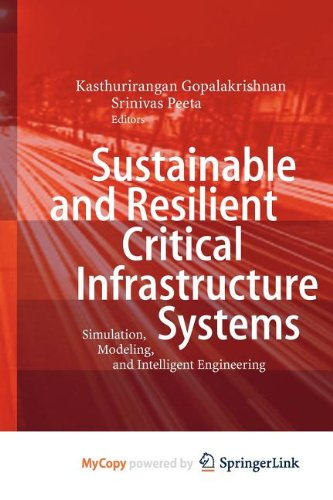 9783642114205: Sustainable and Resilient Critical Infrastructure Systems: Simulation, Modeling, and Intelligent Engineering