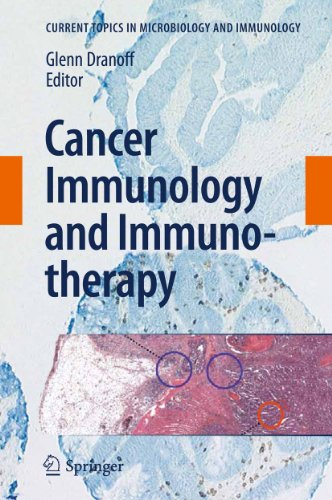 9783642141355: 344: Cancer Immunology and Immunotherapy (Current Topics in Microbiology and Immunology)