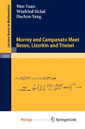 9783642146077: Morrey and Campanato Meet Besov, Lizorkin and Triebel
