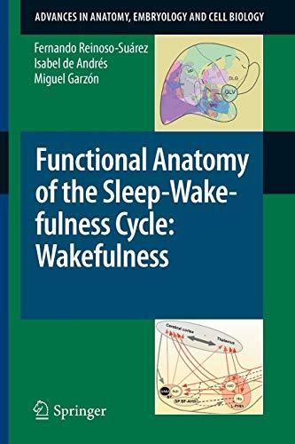 Functional Anatomy of the Sleep-Wakefulness Cycle: Wakefulness - Miguel Garzón