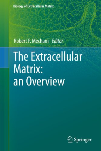The Extracellular Matrix: an Overview (Hardback)