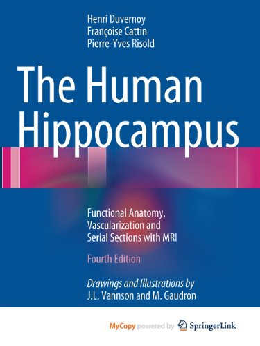 The Human Hippocampus: Functional Anatomy, Vascularization and Serial Sections with MRI (3642336043) by Henri M. Duvernoy; Francoise Cattin; Pierre-Yves Risold